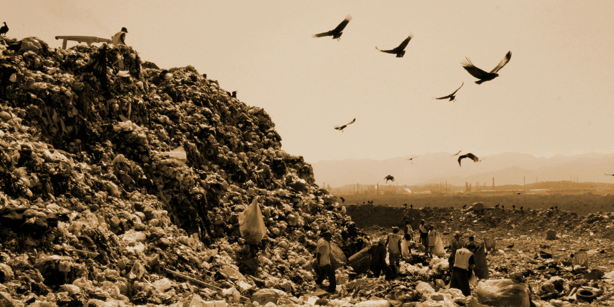 Eco-documentary Waste Land