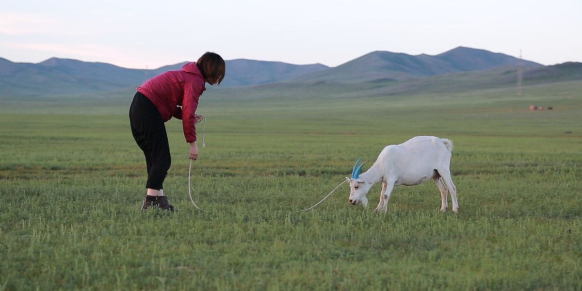 A woman appraoches a goat in a countryside landscape in Bodyscape