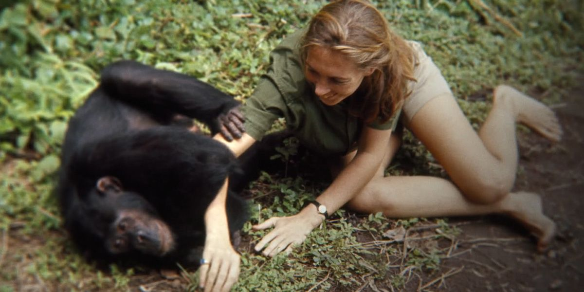 Jane Goodall playing a a chimp in Jane
