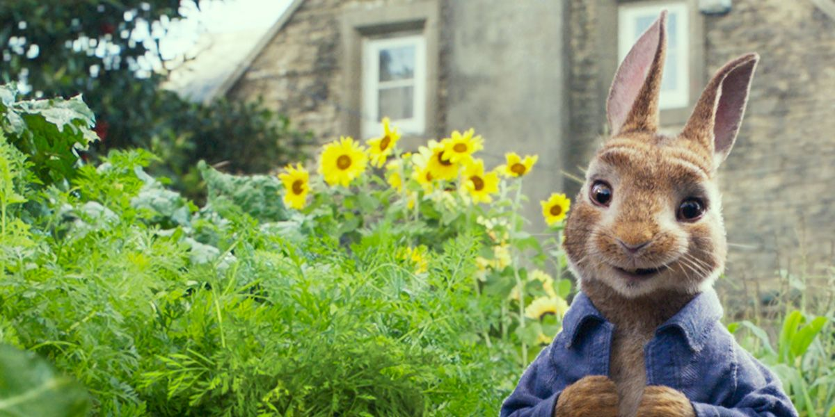 Peter Rabbit, the perfect Easter treat for all the family.